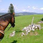 itinéraires équestres